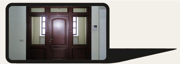 Тонированные двери